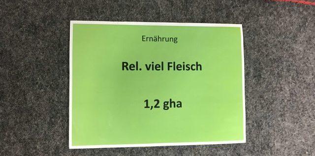 """""""ökologischer Fußabdruck"""""""