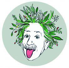 Der Umwelt-Einstein Wettbewerb – 60 Fragen in 5 Tagen